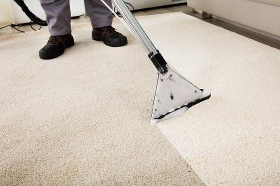 carpet-cleaning worker in lakeland-fl
